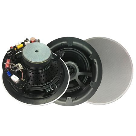 RY-308T定阻扬声器音响
