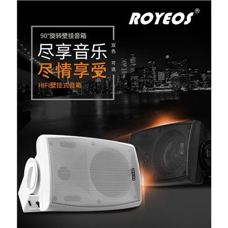 RY-803定压/定阻